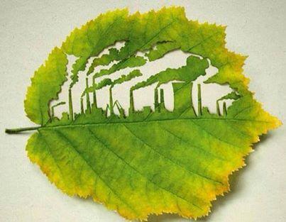 Factory Leaf